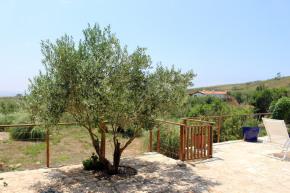 olijfbomen-zwembad